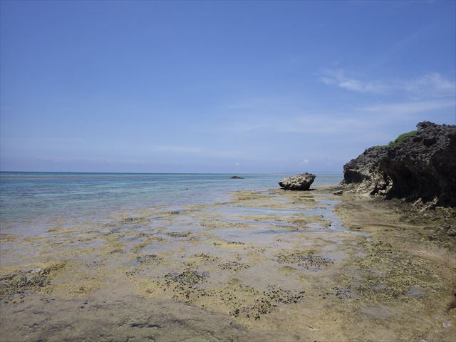 珊瑚の浜からの景色