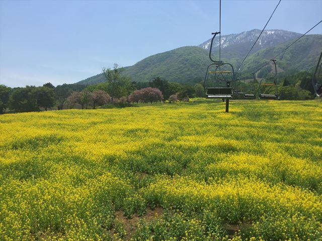 黒姫高原ロープウェイ-登り