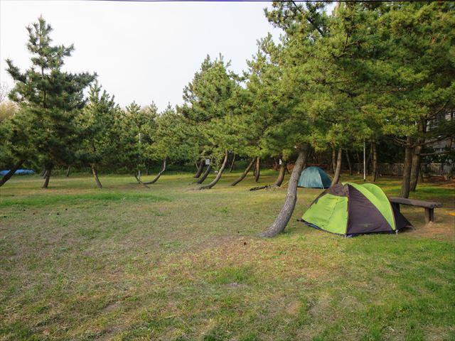 窪田キャンプ場3